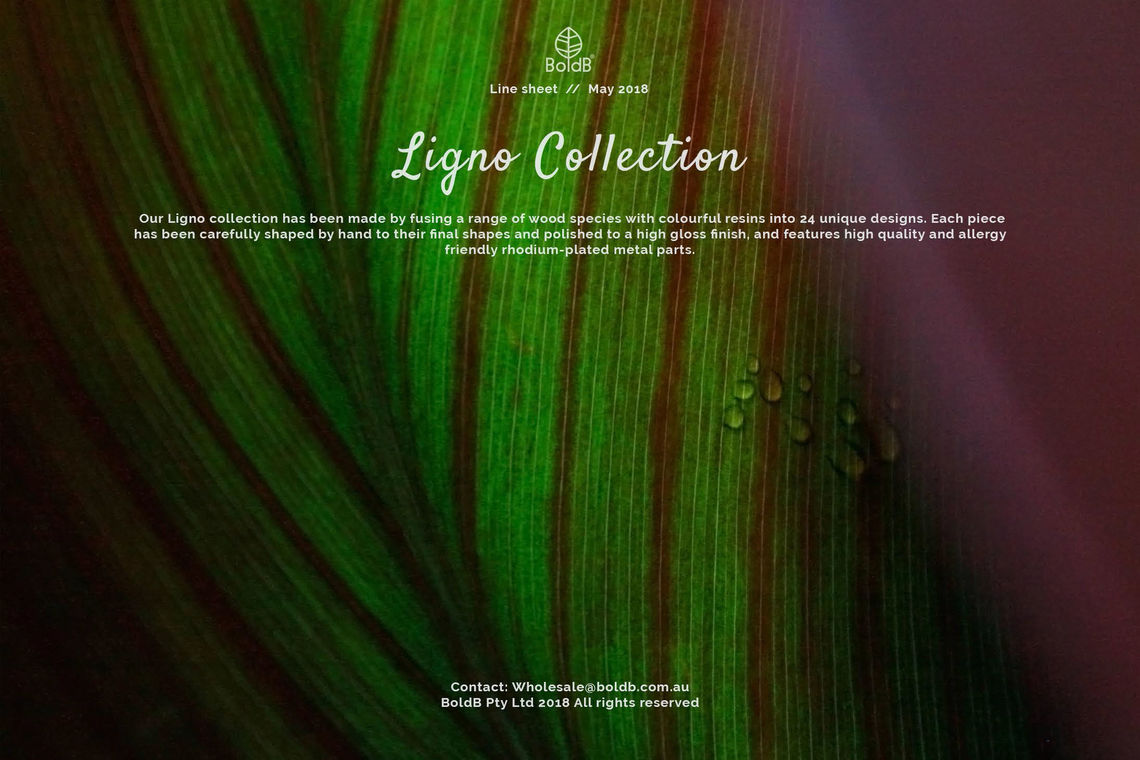 Wholesale jewellery catalogue - Ligno Collection Front Cover